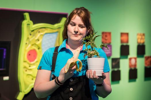 Co žerou rostliny