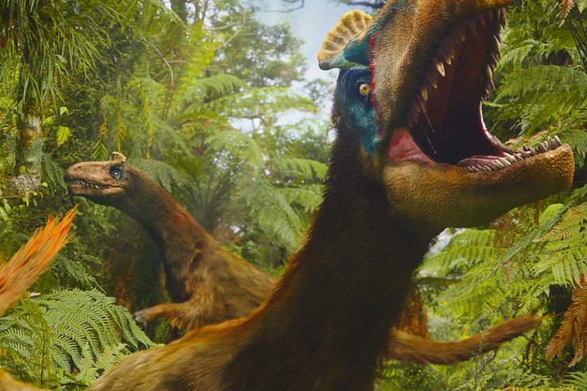 Dinosauři 3D